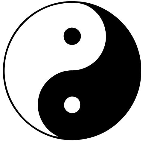 中国医学における陰陽の考え方 ...